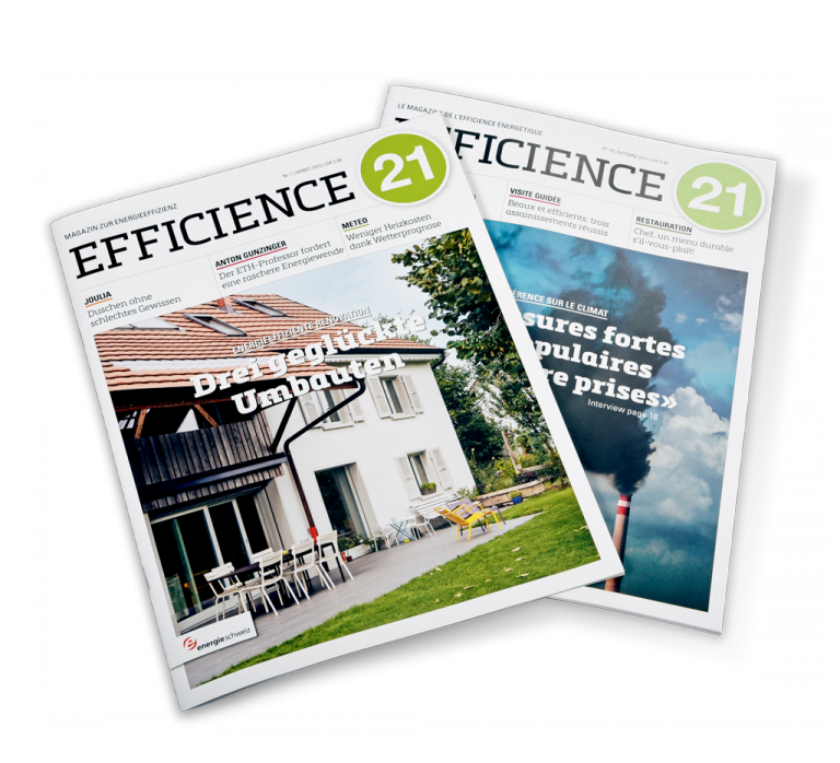 Gassmann Media Produkt Efficience 21
